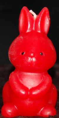 konijn-emilio1
